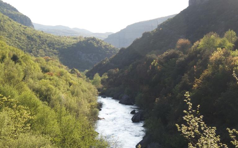Rijeka Cijevna 460