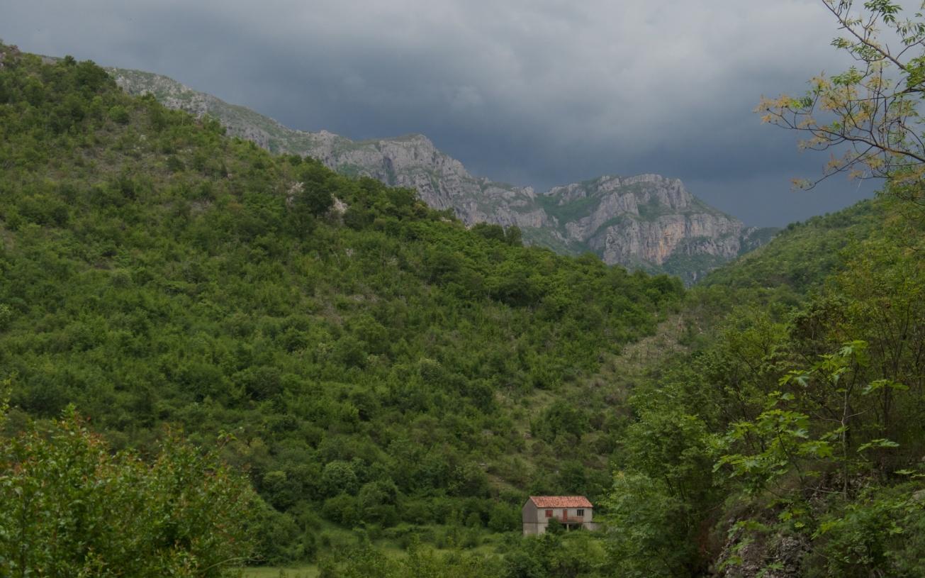 Rijeka Cijevna 462