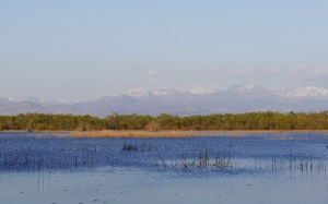 Skadar transitions 460