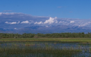 Skadar transitions 462