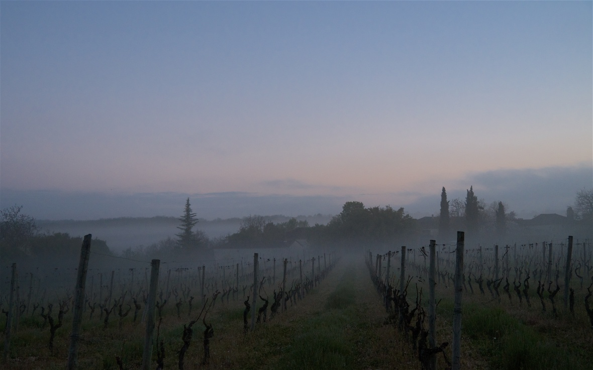 Pech Bely at dawn