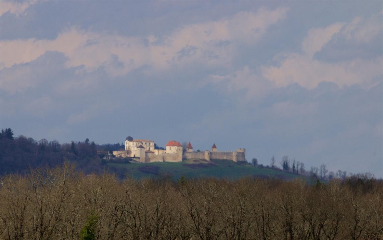 Charente Spring 991