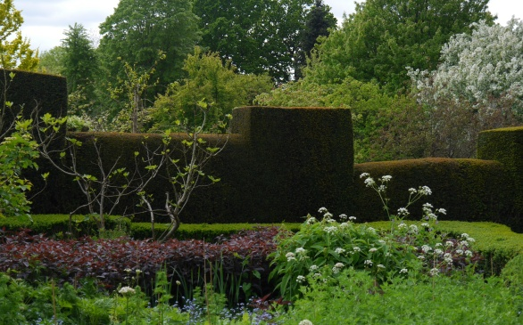 High walls of yew