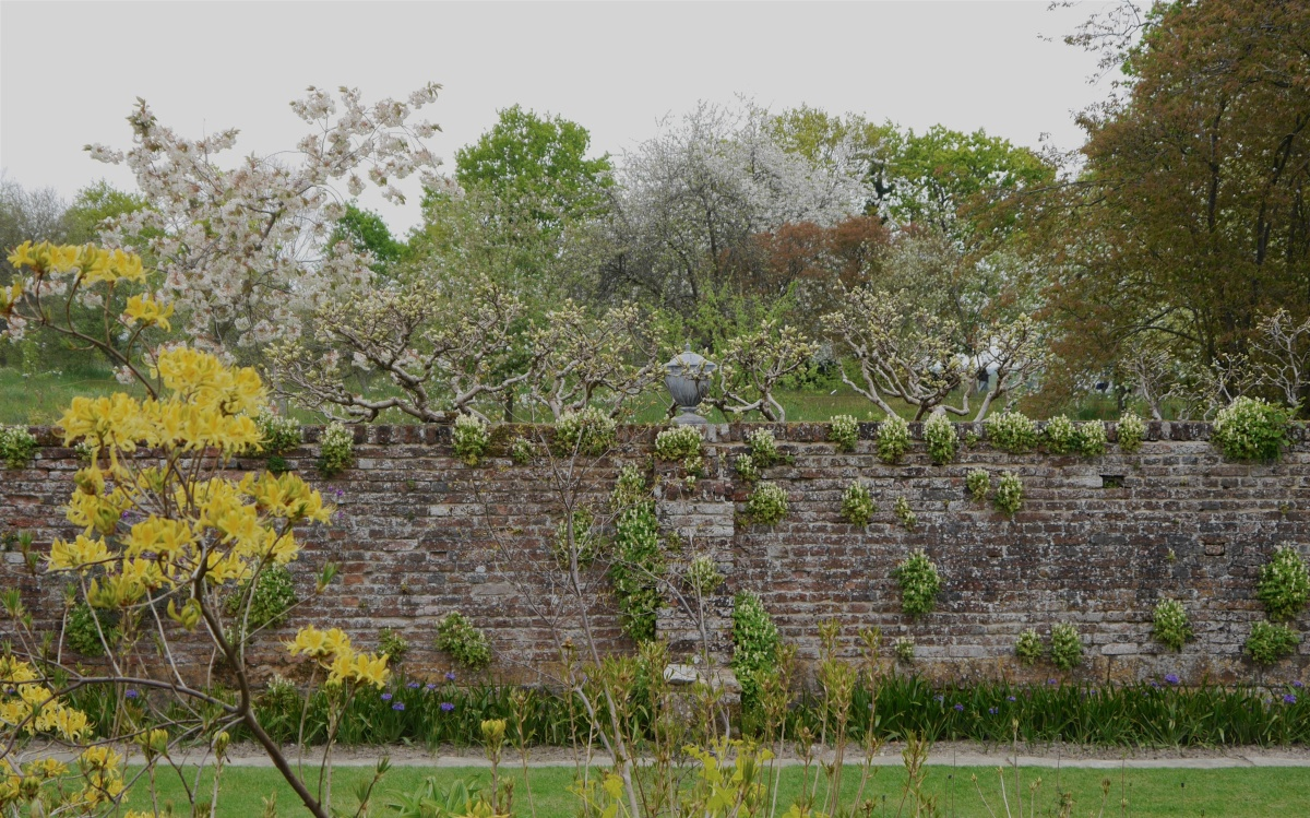 Sissinghurst in May