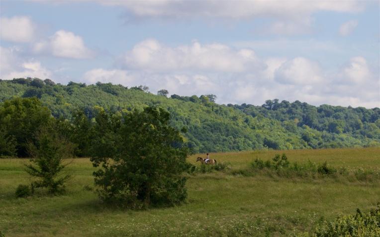 Lullingstone landscape 2
