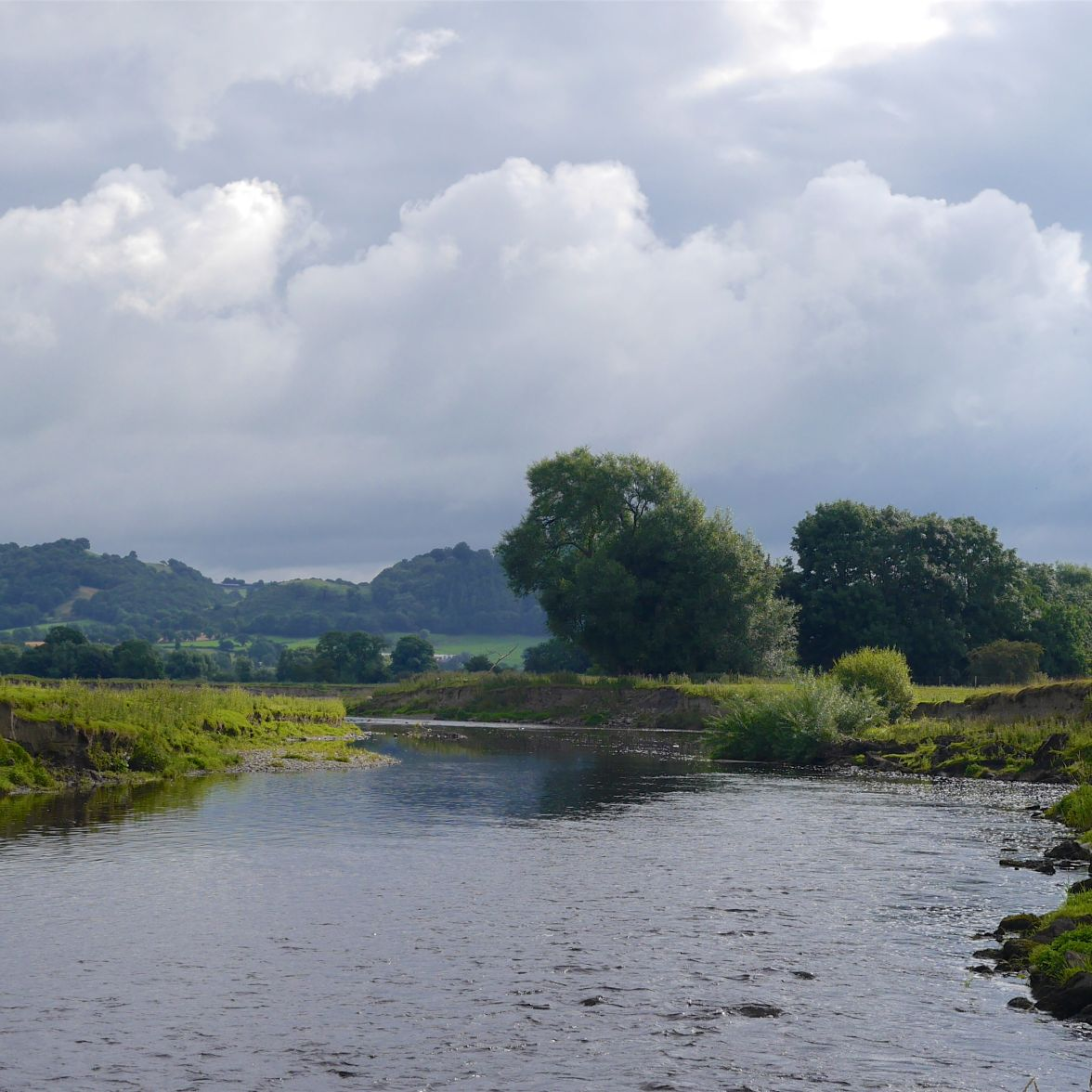 The River Severn in mid-Wales