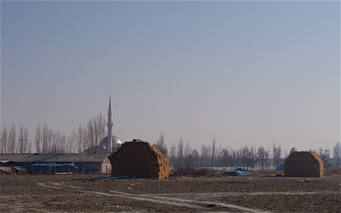 Village, mosque and agriculture