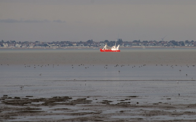 Mudflats off the Isle of Grain with the Thames Estuary and Southend-on-Sea beyond.