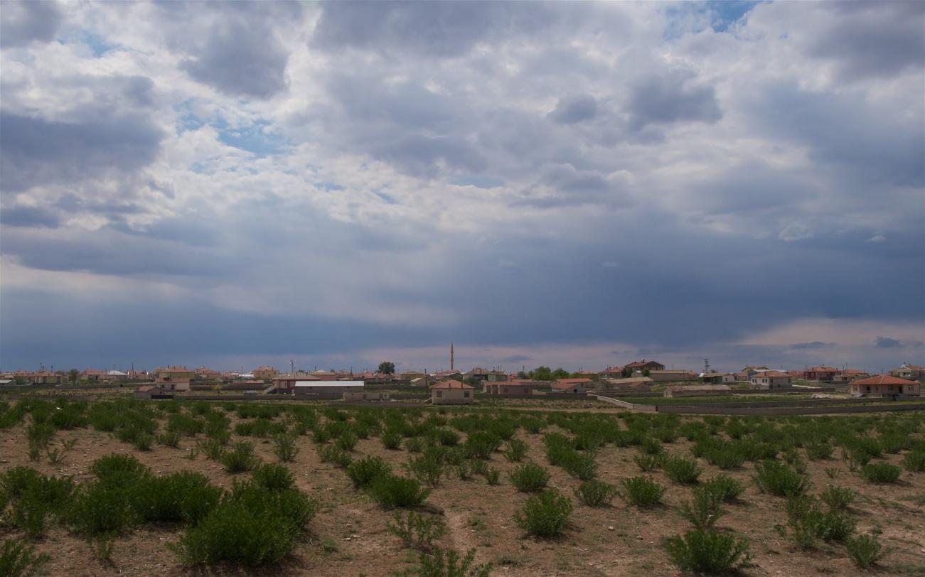 A village that should hold breeding lesser kestrels