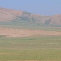 Bozdağ Milli Parkı, Eşmekaya and Gölyazı Bird Surveys