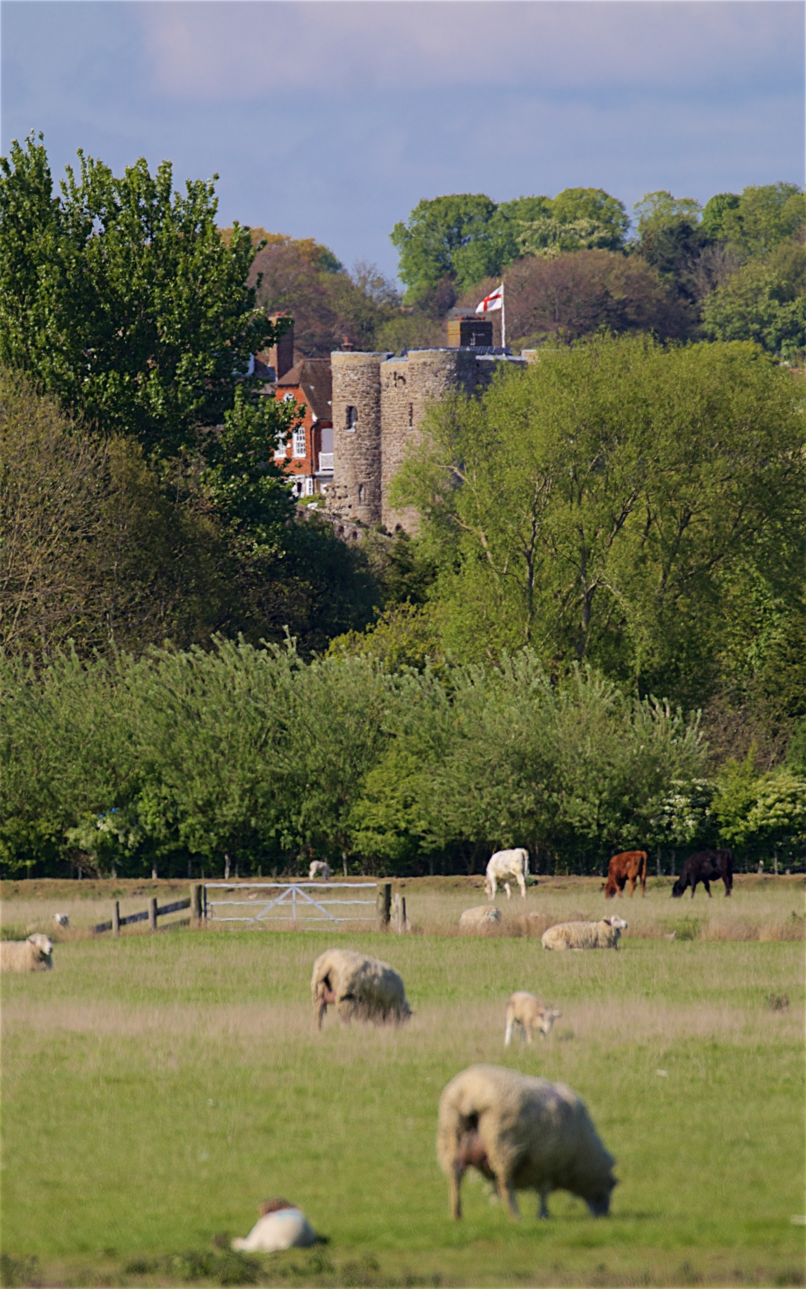 Rye Castle from the old shingle plain near Camber Castle