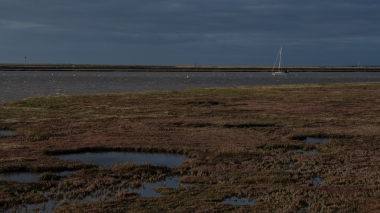 Saltmarsh autumn colours