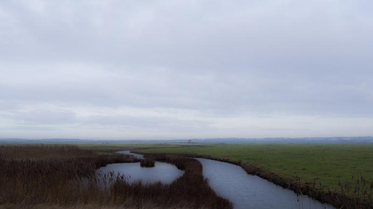 Grazing marsh wilderness